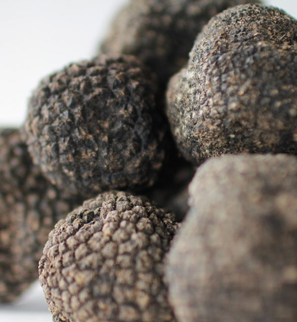 history-of-truffle